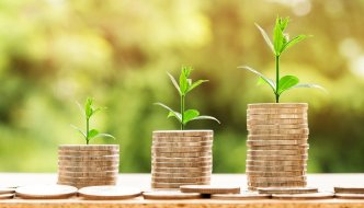 croissance plante argent