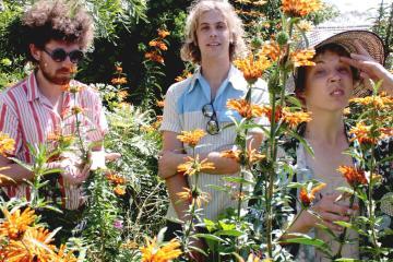 """Escucha el nuevo tema de los australianos Pond, """"3000 Megatons"""". Cúsica Plus"""