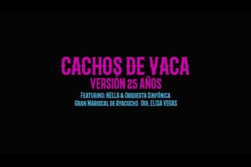 """Desorden Público estrena nueva versión de su tema """"Cachos de Vaca"""". Cusica Plus."""