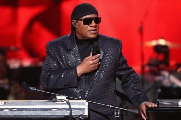 Stevie Wonder recibirá un transplante de riñón. Cusica Plus.