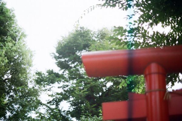 フィルムカメラに色温度調整フィルター青をつけて撮影してみた_鳥居_フィルターなし