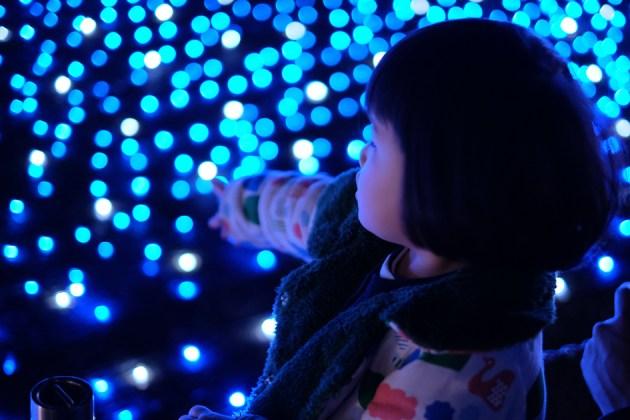 青い光の海_東京ミッドタウン_檜町公園
