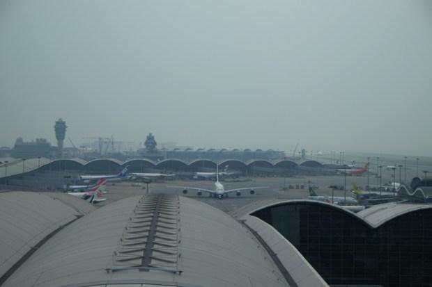 航空探知館_Aviation_discovery_center_ターミナルが良く見える