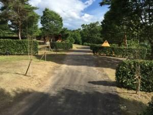 大分農業文化公園オートキャンプ場20