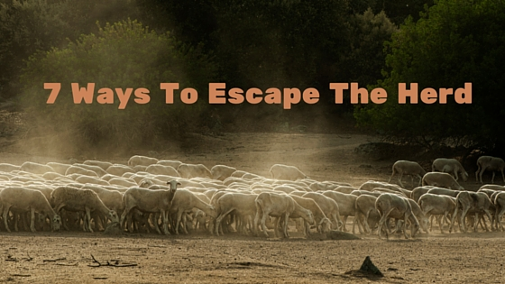 7 Ways To Escape The Herd