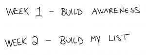 guinea pig list building experiment