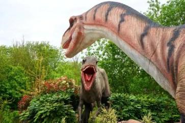 meilleurs livres dinosaures adultes
