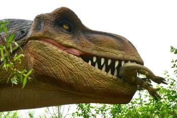 Meilleurs livres dinosaures enfants