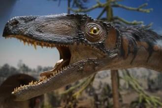 Meilleur livre dinosaures enfant