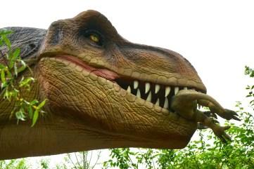 Figurines de Dinosaure Papo et Schleich
