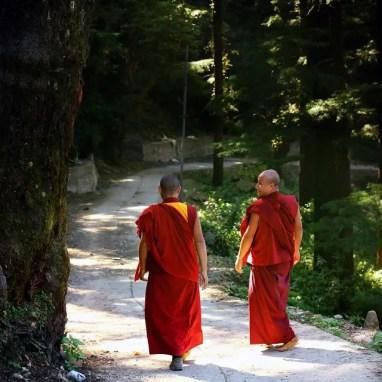 Meilleurs livres sur le Bouddhisme - guide bouddhisme - livre religion bouddhiste