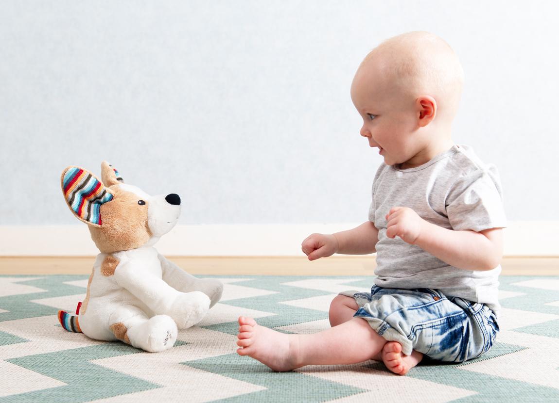 Danny peek-a-boo soft toy pup
