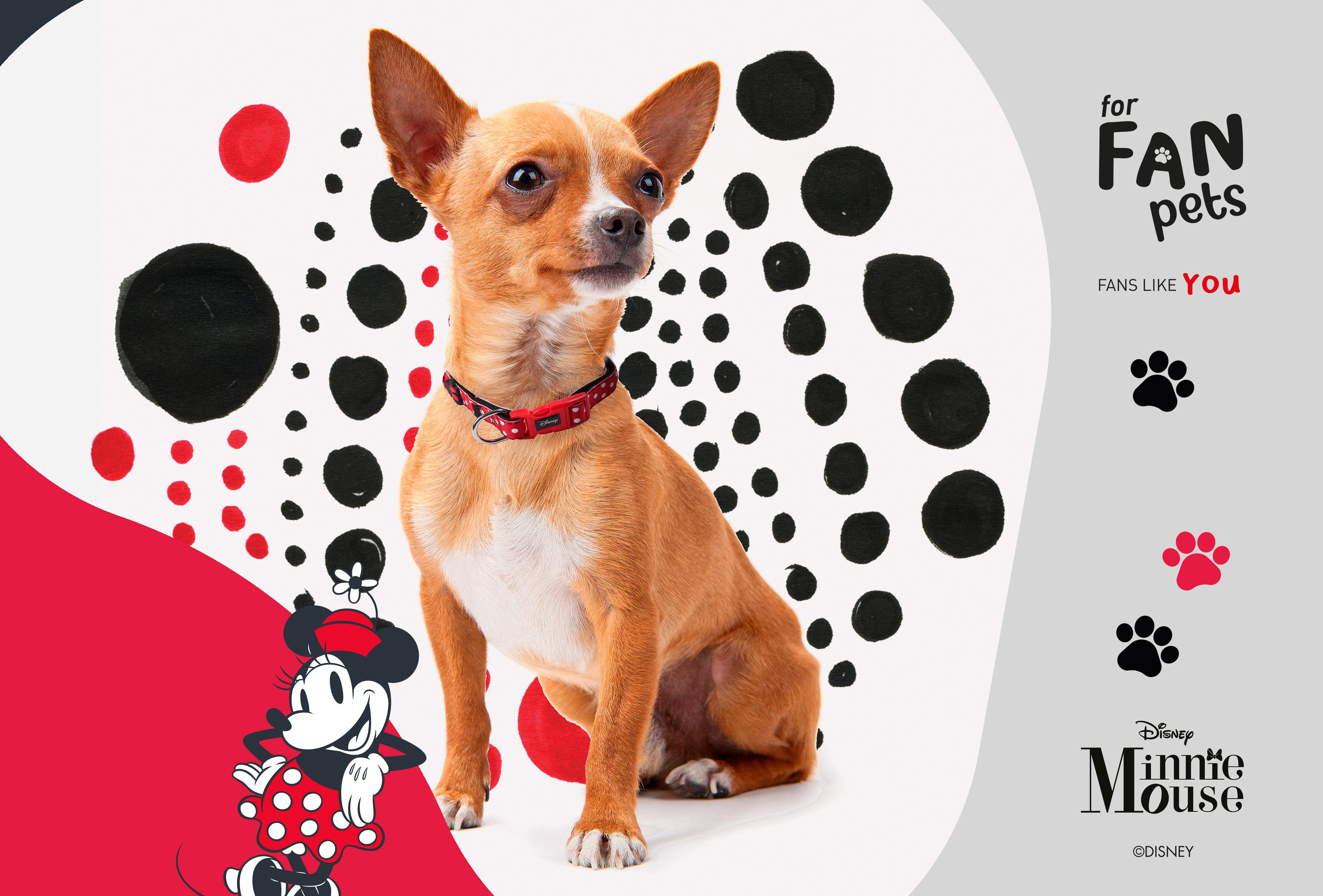 Minnie Mouse Pet Collar