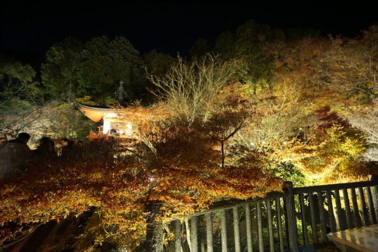 醍醐寺夜間拝観