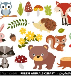 free woodland animal clipart for kids animal png hd for kids [ 1500 x 1208 Pixel ]