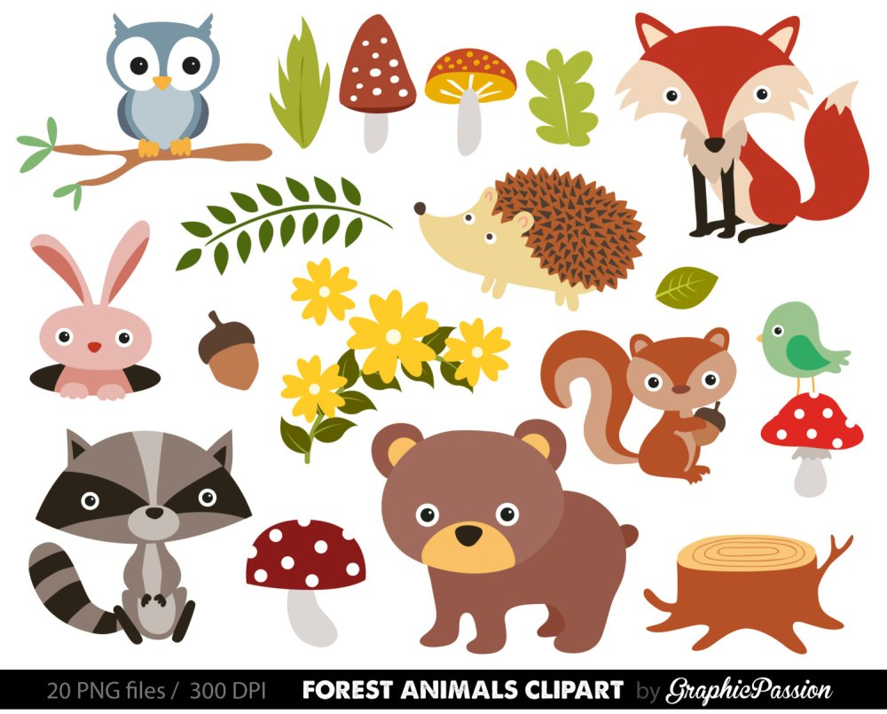 medium resolution of free woodland animal clipart for kids animal png hd for kids