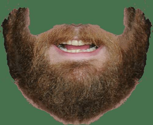 Beard PNG Transparent BeardPNG Images PlusPNG