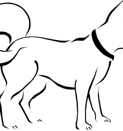 pin pets clipart outline 8 black and white png pets cute puppies png [ 1969 x 1475 Pixel ]