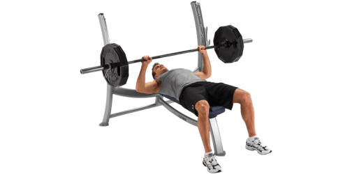 bench gym exercise press transparent weights olympic chest fitness equipment workout advertisement hd pluspng pngall cybex clip clipart plate freepngimg