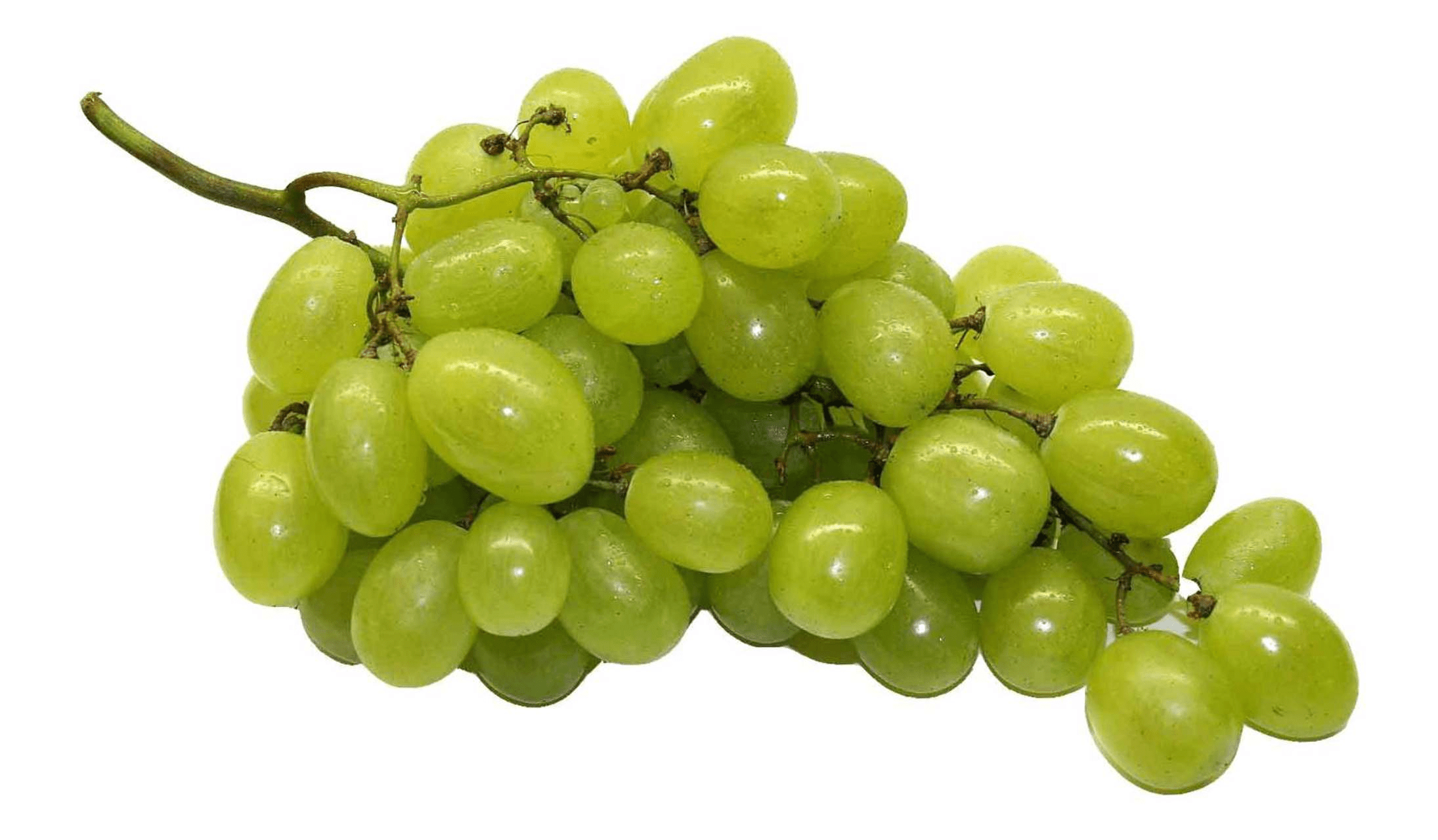 Grapes PNG Transparent GrapesPNG Images PlusPNG