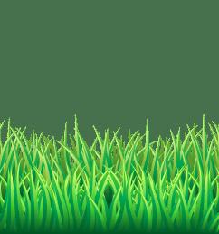 grass png transparent clip art image gallery yopriceville grass png [ 8000 x 2218 Pixel ]