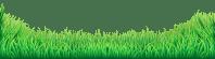Grass PNG Transparent Grass.PNG Images. | PlusPNG