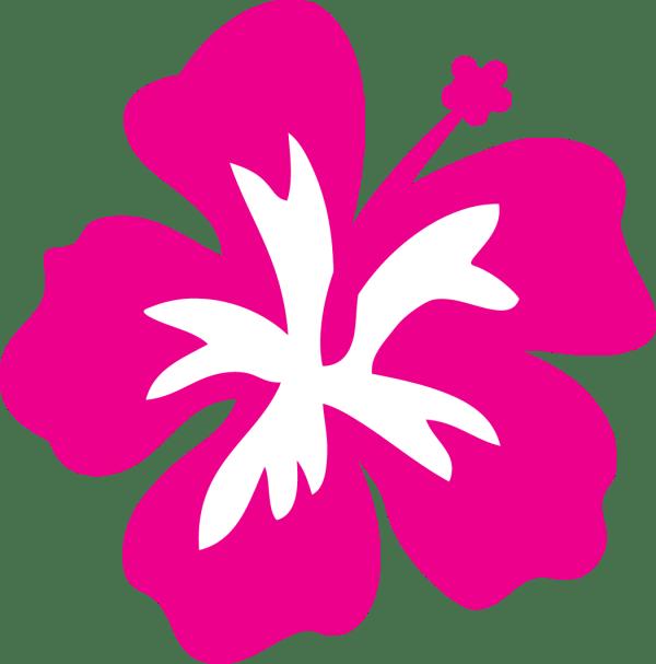hawaiian flower transparent
