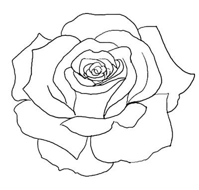 PNG Rose Outline Transparent Rose Outline.PNG Images