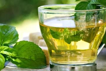 Groene thee tegen veroudering