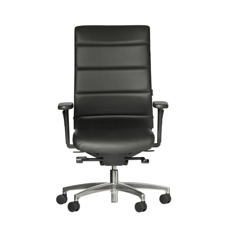 Ergomedic executive chair
