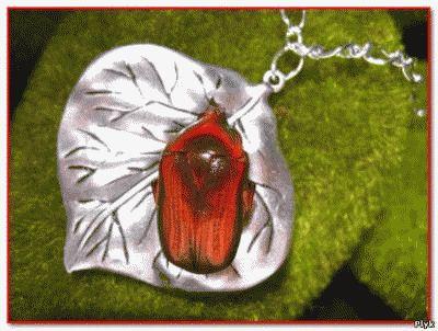 В Мексике популярны украшения из жуков Макеч