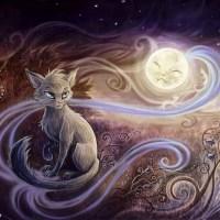 Мистическая сила кошек