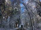 zima na jižním plzeňsku
