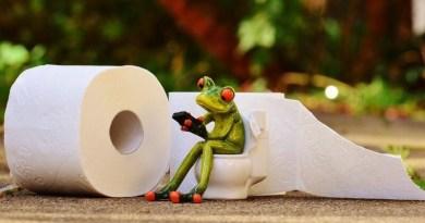 Co používali naši předci před vynálezem toaletního papíru? Možná se budete divit