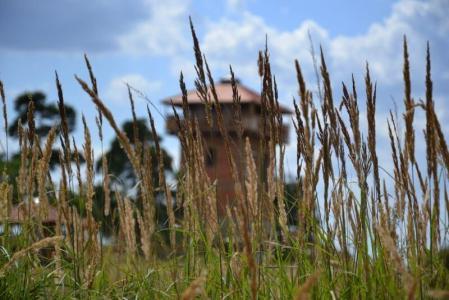 Věž Štěpánka