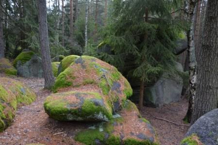 Les uŽihle je plný balvanů
