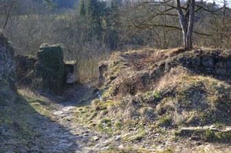 Zřícenina hradu Věžka