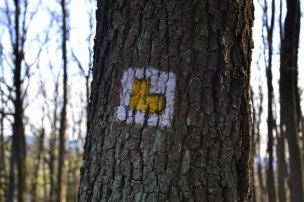 Ke kapli vás nasměruje žlutá značka