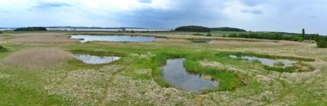 Přírodní rezervace Nový rybník