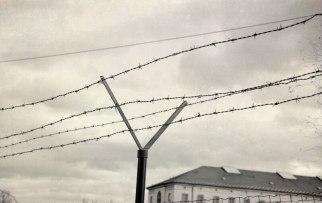 Za zdmi Borské věznice zbylo 13 odsouzenců