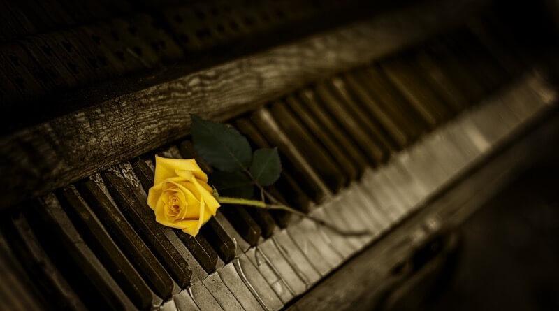 piano a růže