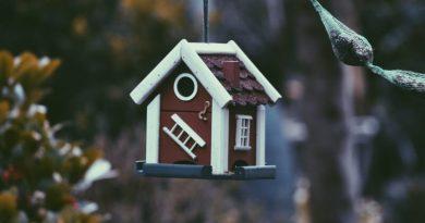 Průvodce hypotékou: Víte, kdy je správný čas na její sjednání?