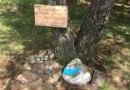 S putovními kamínky se roztrhl pytel. Podívejte se na jejich směnárnu v Dobřanech