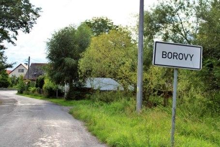 Borovy, v pozadí Berkův rodný dům