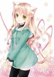 kawaii cat girl anime amino