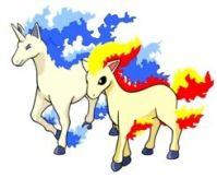 Ponyta & Rapidash | Pokmon Amino