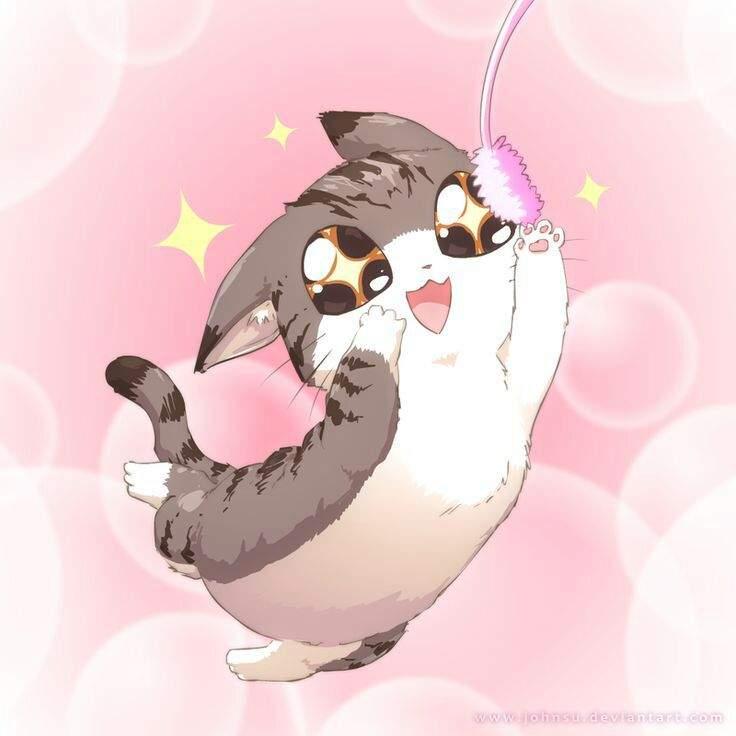 a cat anime cat