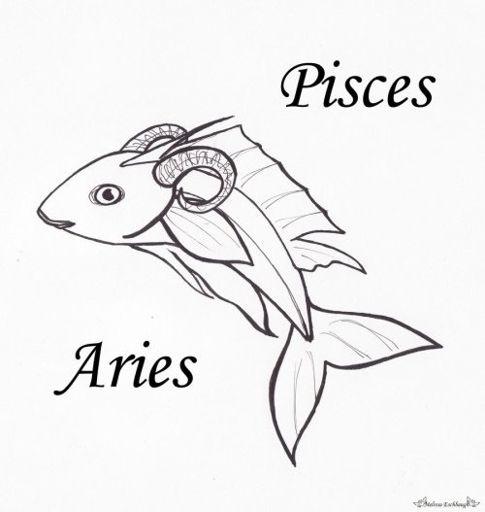 Pisces-Aries Cusp♈️ | Zodiac Amino