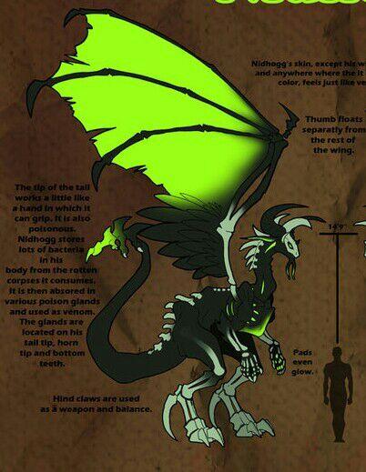 How Tall Is A Dragon : dragon, Virtual, Space, Amino