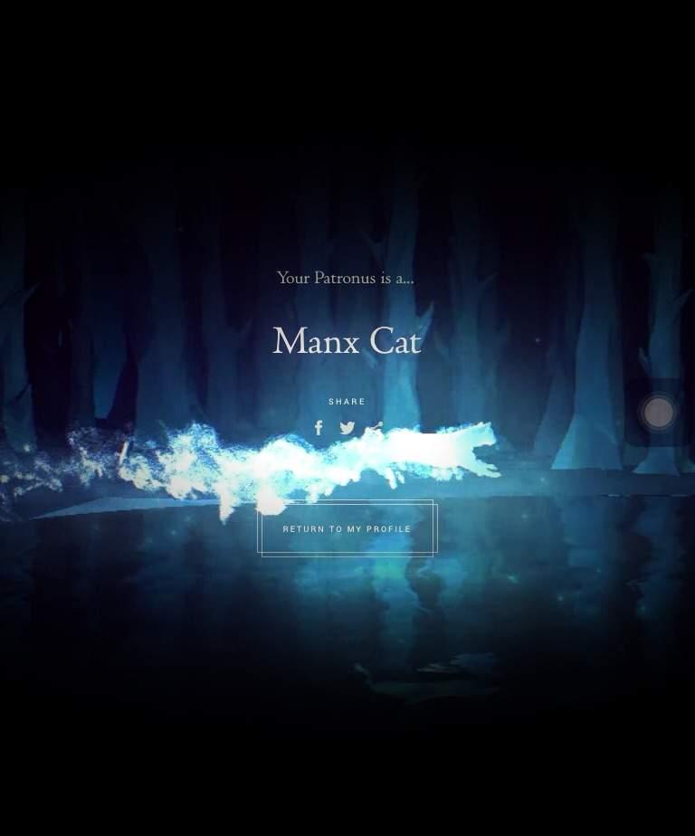 Manx Cat Patronus : patronus, Patronus, Harry, Potter, Amino